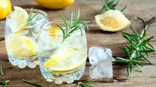 Mediterraner Gin Tonic